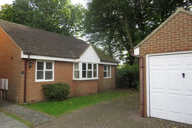 Thumbnail Detached bungalow for sale in Sussex Court, Billericay
