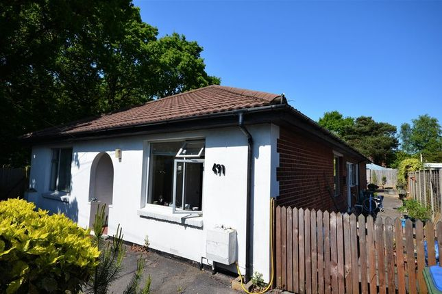 Thumbnail Detached bungalow to rent in Bursledon Road, Southampton