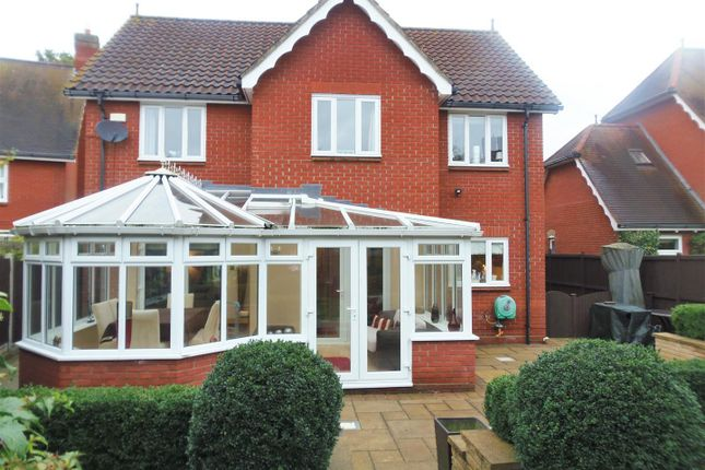 Thumbnail Property to rent in Keepers Green, Braiswick, Colchester