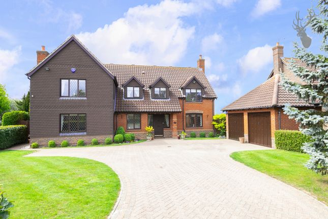 Thumbnail Detached house for sale in The Paddocks, Stapleford Abbotts
