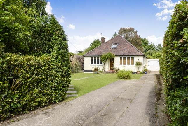 Thumbnail Bungalow for sale in West Horsley, Surrey