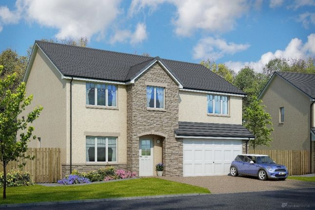 Cairneyhill New Homes For Sale Buy New Homes In