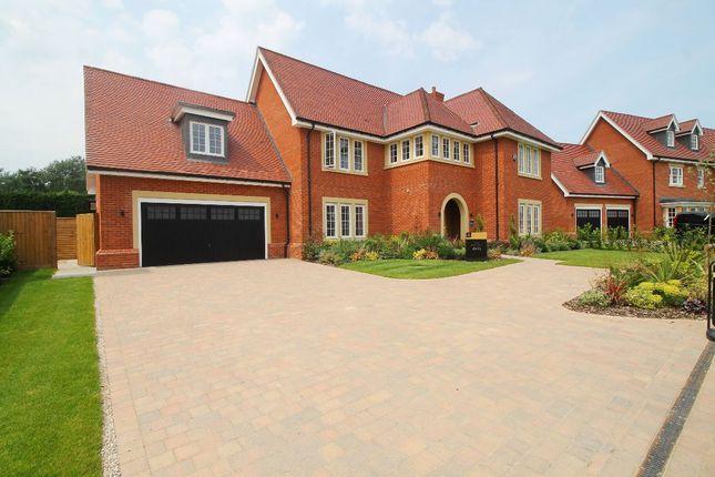 Thumbnail Detached house for sale in The Herrick At Trueloves Grange, Trueloves Lane, Ingatestone, Essex