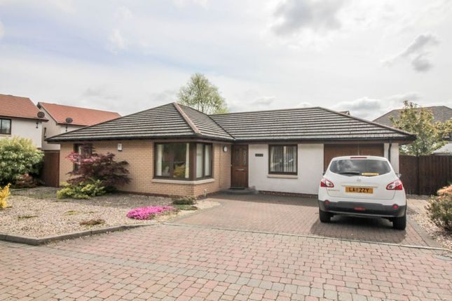 Thumbnail Detached bungalow for sale in 25 Clifford Park, Menstrie