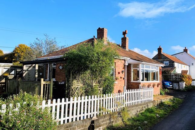 Thumbnail Detached bungalow for sale in Top Road, Wrantage, Taunton - Rural Location, Open Views