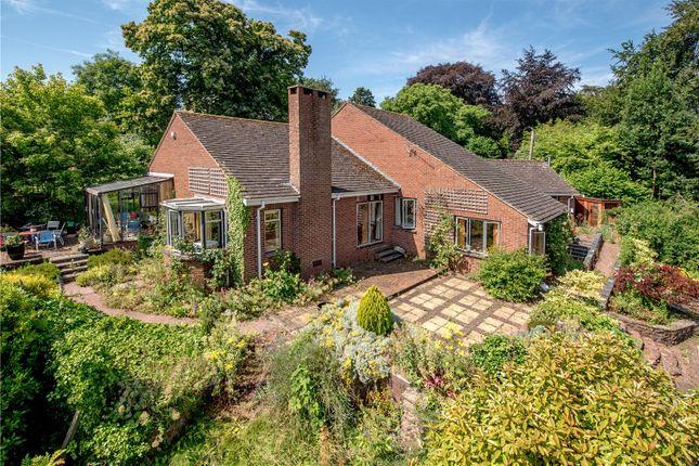 Thumbnail Bungalow for sale in Halse, Taunton, Somerset