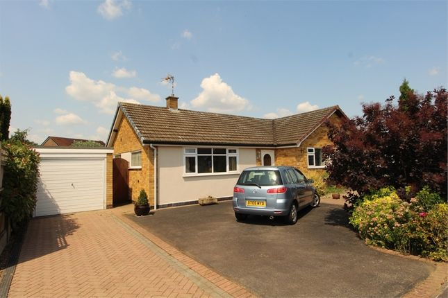 2 bed semi-detached bungalow for sale in Sycamore Drive, Lutterworth LE17
