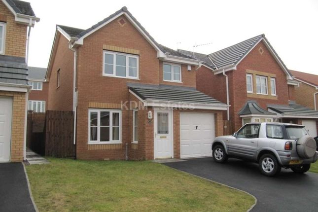 Thumbnail Detached house to rent in Cinnamon Drive, Trimdon Station