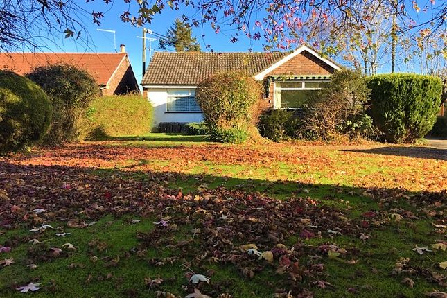Thumbnail Detached bungalow for sale in Hayes Mead, Motcombe, Shaftesbury