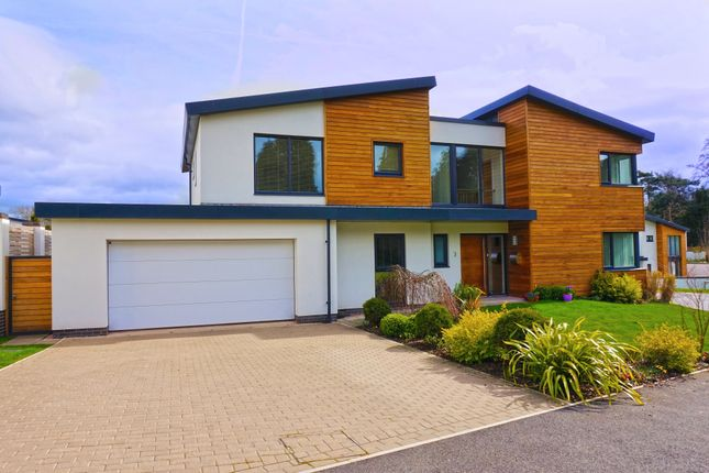 Thumbnail Detached house to rent in Holland Park, Exeter