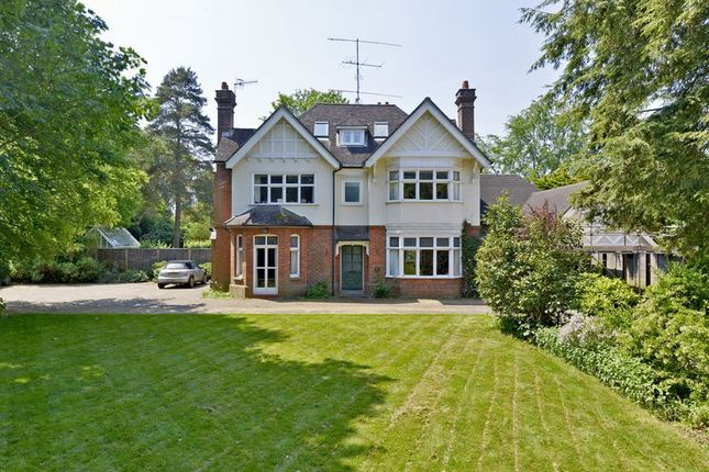Thumbnail Detached house to rent in Busbridge Lane, Godalming