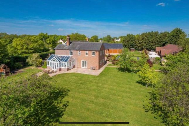 Thumbnail Detached house for sale in Oak Road, Halstead