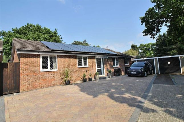Thumbnail Detached bungalow for sale in Smugglers Lane North, Highcliffe, Christchurch