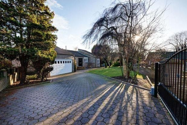 Thumbnail Detached bungalow to rent in Shap Close, Washington