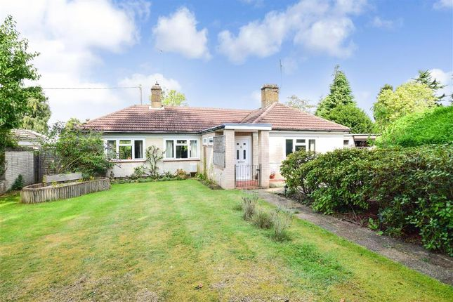 Thumbnail Detached bungalow for sale in Yew Tree Place, Liss, Hampshire