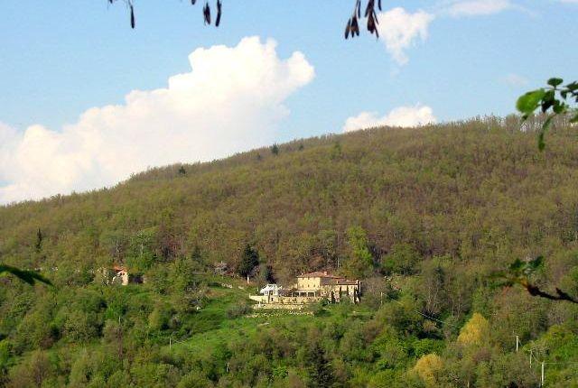 Picture No.04 of Pelago Monastic Farmhouse, Pontassieve, Tuscany