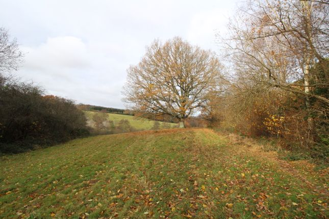 Thumbnail Land for sale in Town Row, Rotherfield