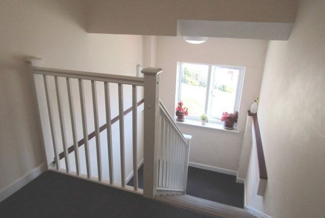 Communal Hallway of White Friars Lane, St Judes, Plymouth PL4