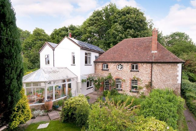 Thumbnail Detached house for sale in Cave Hill, Maidstone