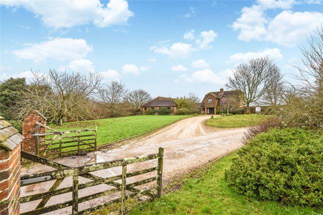 Thumbnail Detached house for sale in Church Lane, Pilley, Lymington, Hampshire