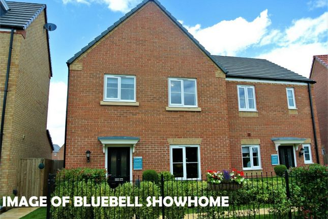 Thumbnail Semi-detached house for sale in The Bluebell, Bourne, Lincolnshire