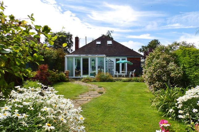 Thumbnail Bungalow for sale in Willingdon Way, Willingdon, Eastbourne