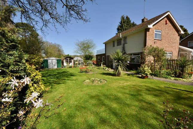 Thumbnail Detached house for sale in Hope Corner Lane, Taunton
