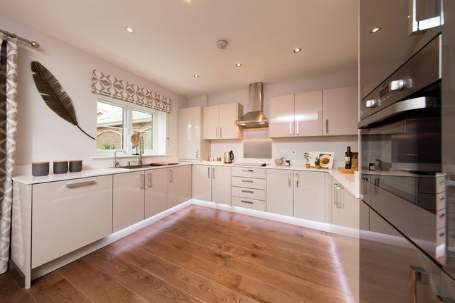 Thumbnail Semi-detached house for sale in The Elms, Mountnessing, Brentwood