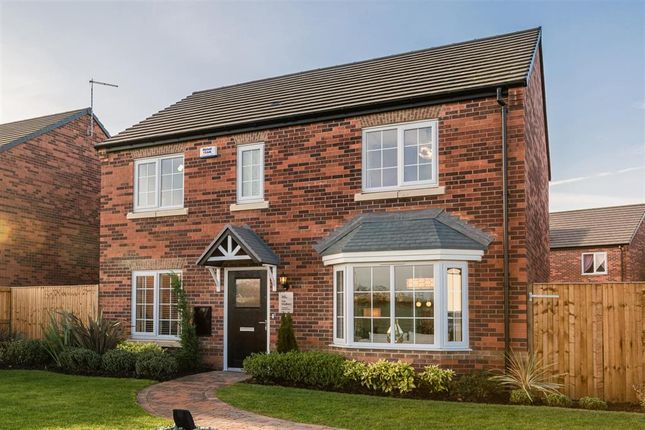 """Thumbnail Detached house for sale in """"The Shelford - Plot 35"""" at West End Lane, New Rossington, Doncaster"""
