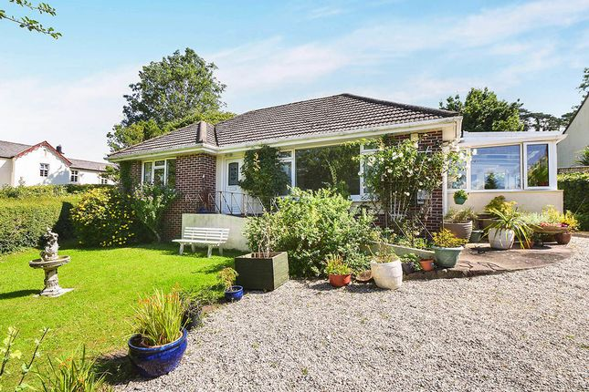 Thumbnail Bungalow for sale in Totnes Road, Newton Abbot