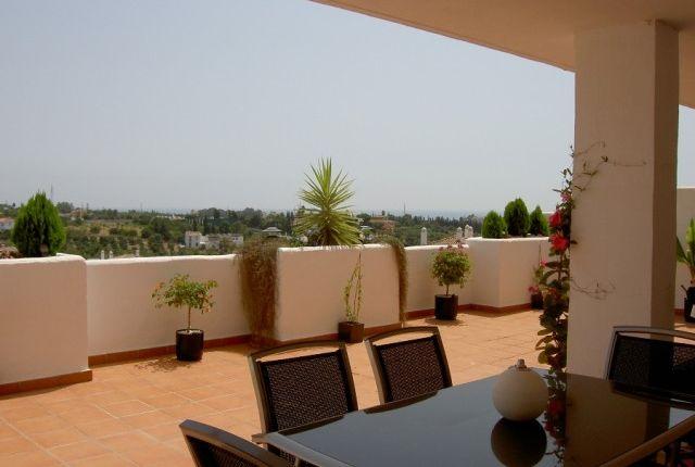 Terrace of Spain, Málaga, Estepona