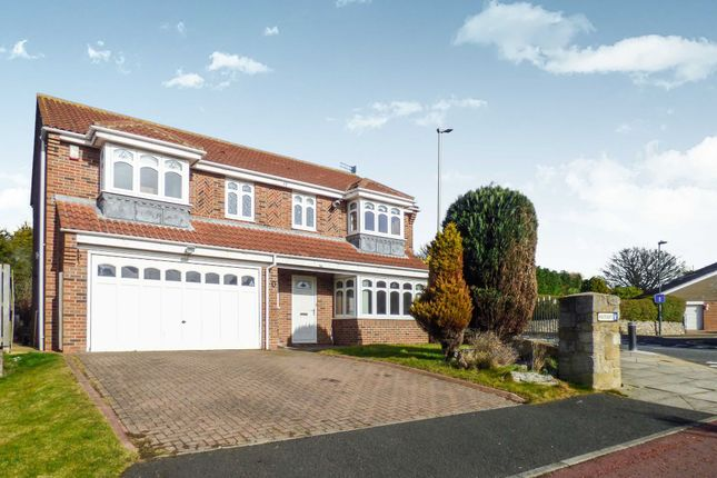 Thumbnail Detached house to rent in Westcroft, Whitburn, Sunderland