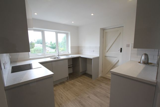 Thumbnail Bungalow to rent in Lampitts Green, Wroxton