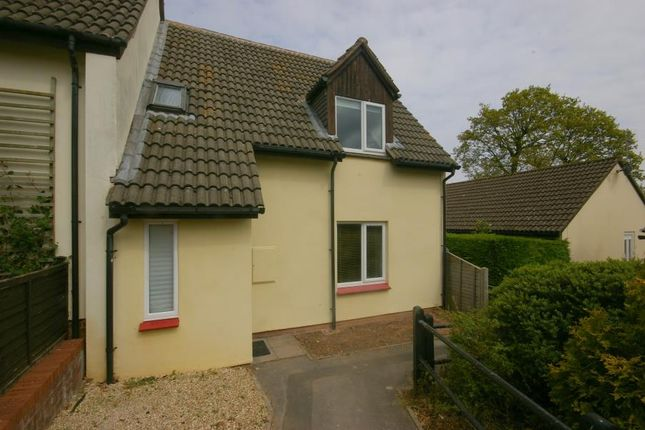 Thumbnail Property to rent in Oak Close, Minehead