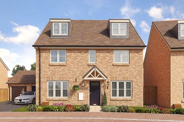 Thumbnail Detached house for sale in Barnfield Road, St. Albans