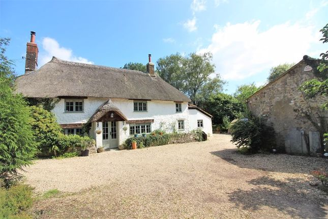 Thumbnail Detached house for sale in Dairs Barton, Tatworth, Somerset