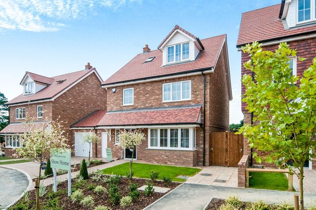Thumbnail Detached house for sale in Woodacres Way, Arlington Road East, Hailsham