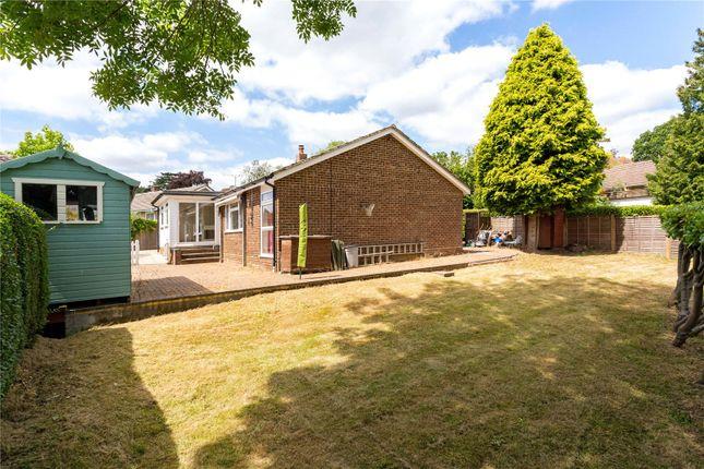 Picture No. 12 of Mapledrakes Close, Ewhurst, Cranleigh, Surrey GU6