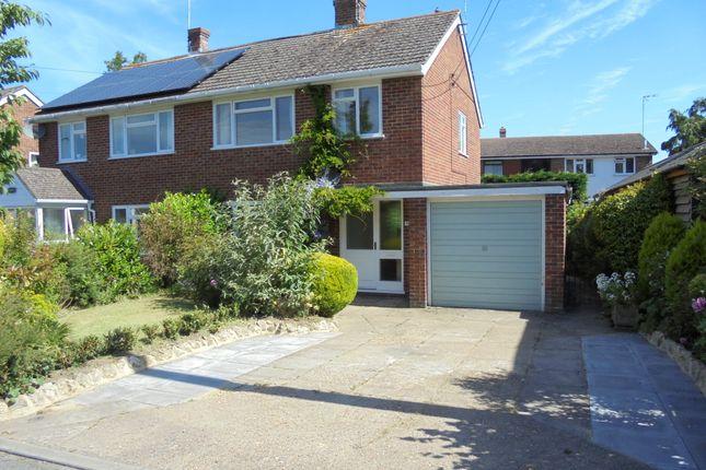 Thumbnail Semi-detached house to rent in Plain Road, Ashford, Kent