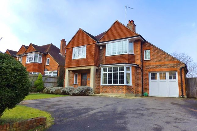 Thumbnail Detached house for sale in The Chestnuts, 51 Decoy Drive, Eastbourne