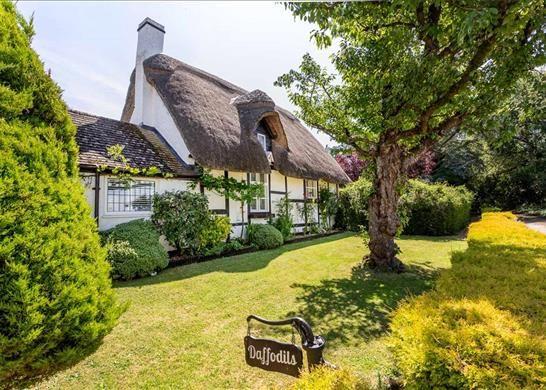 Thumbnail Bungalow for sale in Sandy Pluck Lane, Cheltenham, Gloucestershire