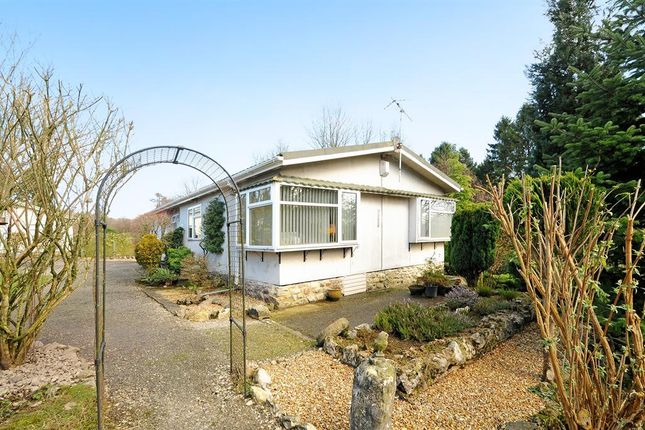 Thumbnail Bungalow for sale in Park View Drive, Long Ashes Park, Threshfield