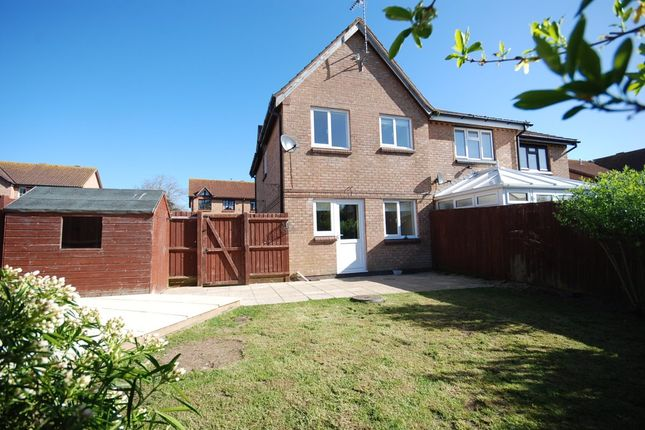 Thumbnail Semi-detached house to rent in Primrose Way, Seaton