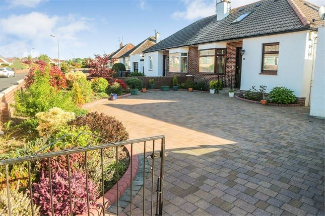 Thumbnail Semi-detached bungalow for sale in Taybank Drive, Ayr
