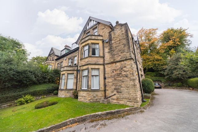 10Oakpark-8 of Oak Park, Broomhill, Sheffield S10