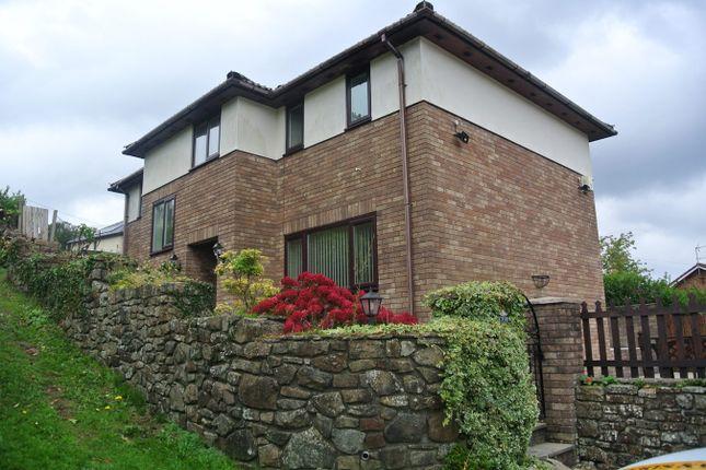 Thumbnail Detached house for sale in Viaduct Road, Garndiffaith, Pontypool
