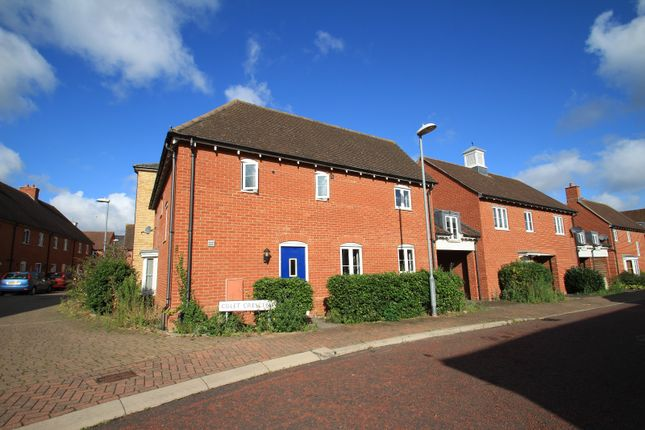 Thumbnail Detached house to rent in Dapifer Close, Colchester