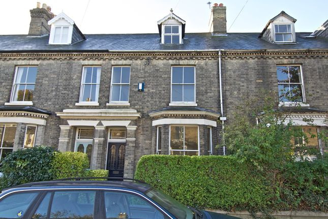 Thumbnail Terraced house to rent in Clarendon Road, Norwich