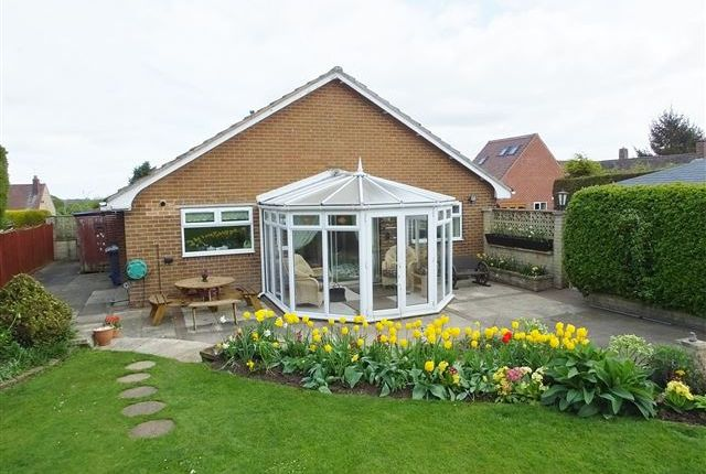 Thumbnail Bungalow for sale in Woodsetts Road, Worksop