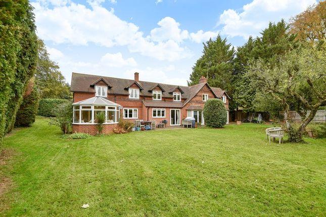 Thumbnail Detached house for sale in Skippetts Lane West, Basingstoke